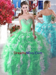 Wonderful Organza Big Puffy Quinceanera Dress with Beading and Ruffles