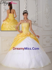 Fabulous Ball Gown Appliques and Hand Made Flower Quinceanera Dresses