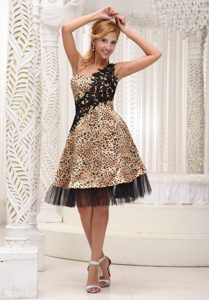 Magnificent Leopard and Tulle Evening Wear Dresses with Appliques