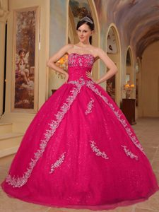 Hot Pink Ball Gown Quinceanera Gown Dress Embroidery and Beaded