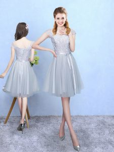 Tulle V-neck Cap Sleeves Lace Up Lace Quinceanera Dama Dress in Silver