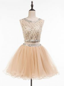 New Style Champagne Sleeveless Tulle Side Zipper Homecoming Dress for Prom and Party and Sweet 16