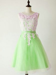 Glittering Lace Up Quinceanera Court Dresses Lace Sleeveless Knee Length