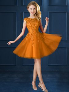 Dynamic Gold A-line Tulle Bateau Cap Sleeves Lace and Belt Knee Length Lace Up Damas Dress