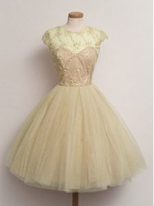 Tulle Scoop Cap Sleeves Lace Up Lace Damas Dress in Champagne