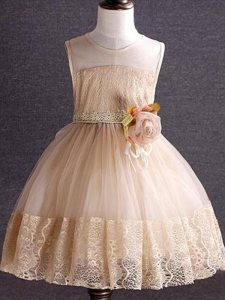 Lace and Hand Made Flower Kids Pageant Dress Champagne Zipper Sleeveless Knee Length