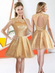 Comfortable Champagne A-line Organza Bateau Sleeveless Beading and Lace Knee Length Backless Dama Dress for Quinceanera