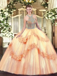 Delicate Sleeveless Lace Up Floor Length Beading and Appliques Sweet 16 Quinceanera Dress