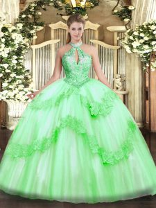 Sleeveless Appliques and Sequins Lace Up Vestidos de Quinceanera