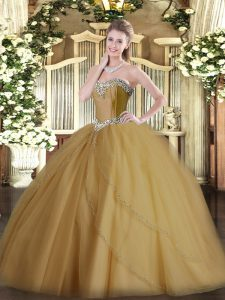 Sleeveless Tulle Brush Train Lace Up 15 Quinceanera Dress in Champagne with Beading