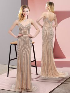Champagne Zipper Prom Party Dress Beading Sleeveless Sweep Train