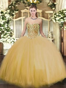 Sleeveless Lace Up Floor Length Beading Quinceanera Dress