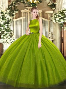 Gorgeous Scoop Sleeveless Tulle Quinceanera Dress Belt Clasp Handle