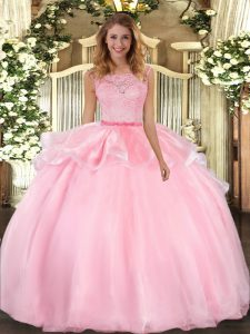 Shining Lace Sweet 16 Quinceanera Dress Pink Clasp Handle Sleeveless Floor Length