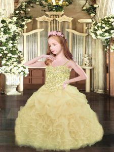Lovely Organza Sleeveless Asymmetrical Kids Formal Wear and Appliques and Ruffles and Pick Ups