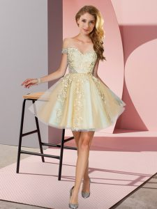 Eye-catching Champagne A-line Tulle Off The Shoulder Sleeveless Appliques Mini Length Zipper Damas Dress