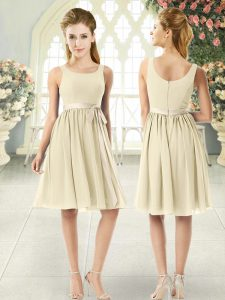 Attractive Light Yellow Empire Ruching Dress for Prom Zipper Chiffon Sleeveless Knee Length