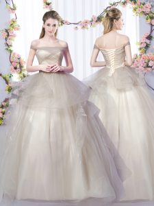 Floor Length A-line Sleeveless Grey Quinceanera Dresses Lace Up