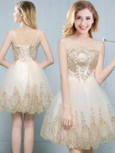 Luxurious Scoop Sleeveless Damas Dress Mini Length Appliques Champagne Tulle