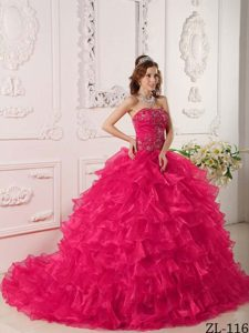 Hot Pink Strapless Ruffled and Embroidery Sweet Sixteen Dresses
