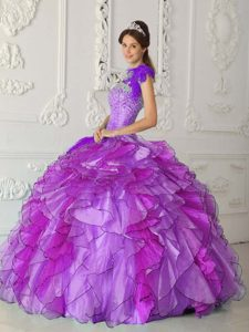 Purple Strapless and Beaded Popular Quinceanera Dresss