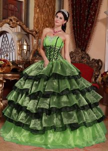 Exquisite Sweetheart Ruffled Quinceanera Gowns in Multi-color