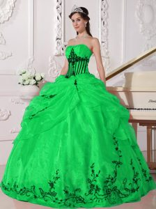 Green and Black Strapless 2014 Exquisite Sweet 15 Dresses with Appliques