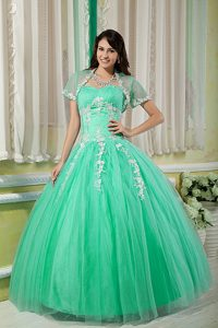 Elegant Green Lace-up Tulle Long Quinceanera Dress with Appliques