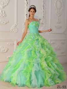 Memorable Multi-color Strapless Quinceanera Dress with Flowers