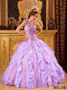 Tasty Multi-color One Shoulder Quinceanera Gowns and Organza