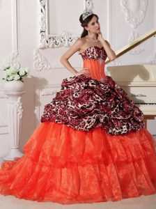 Leopard and Appliqued Quinceanera Dress with Sweep Train on Sale