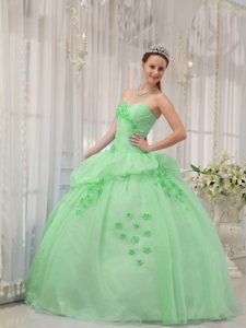 Wholesale Price Ball Gown Sweetheart Quinceanera Dresses in Apple Green