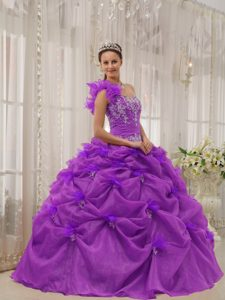 Fuchsia One-shoulder Graceful Quinceanera Dress in with Appliques