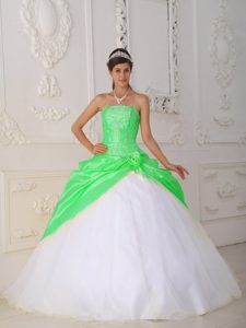 Noble Green and White Strapless Quinceanera Dress in and Taffeta