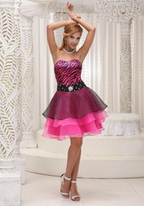 Hot Pink Knee-length and Zebra Sweetheart Prom Cocktail Dress with Layers