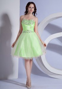 Attractive Beading A-line Spring Green and Maxi Party Dress