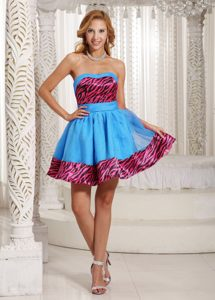 Provocative Zebra A-line Mini-length Aqua Blue Maxi Party Dress in