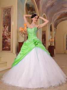 Exquisite Spring Green and White Princess Sweet Sixteen Dresses for Fall