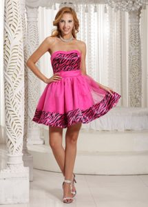 Stylish Zebra A-line Mini-length Hot Pink Flower Girl Pageant Dress