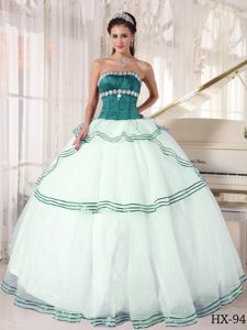 Fashionable Multi-color Strapless Appliques Dress for Quince