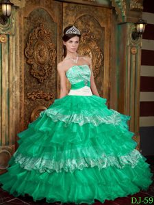 Nice Turquoise Strapless and Zebra Appliqued Quinceanera Dress with Layers