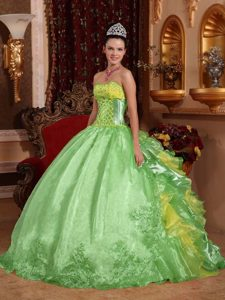 Hot Spring Green Strapless Dresses for a Quince in with Embroidery