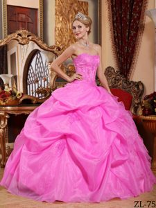 Graceful Hot Pink Strapless Appliqued Quinceanera Dress